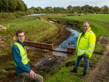Oplossing voor de droogte op de Veluwe: beekwater in de bodem infiltreren en in de toekomst mogelijk ook Randmeerwater