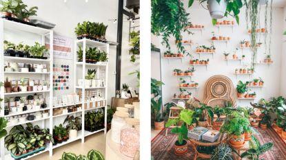"""De grote interieurboom: """"Deco is de nieuwe mode"""" + 7 gloednieuwe woonadresjes"""