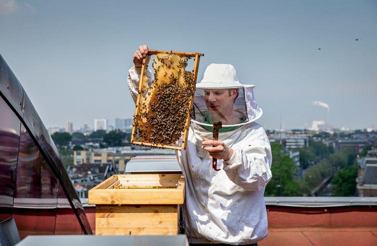 Nieuw-Zeelandse criminelen verdienen veel geld aan gestolen bijenkasten. Beeld Jean-Pierre Jans