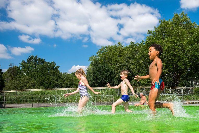 Deze kinderen genieten met volle teugen van een middagje plonzen in zwemvijver Boekenberg.