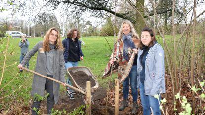 Klimaatjongeren planten boom in Albert I-park