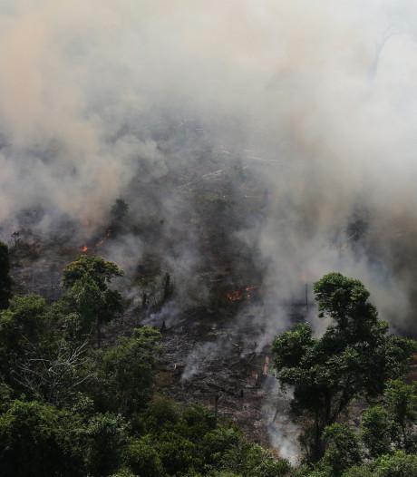 Enorme inferno in Brazilië: vuurzee in Amazone door ontbossing