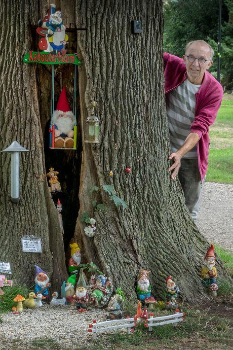 Bij deze holle boom is een heus kabouterdorp ontstaan: ' Ik heb er een schommeltje in geknutseld'