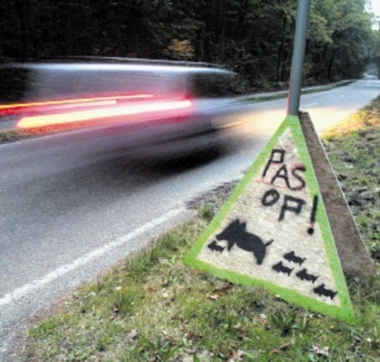 Een bord waarschuwt voor wilde zwijnen. (FOTO ROB VOSS, ANP) Beeld