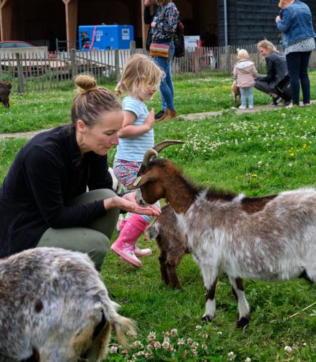 Echt voor Barendrecht: Wordt er rekening gehouden met boerderijdieren tijdens festival?