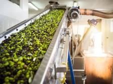 Italiaanse olijfolie wordt steeds duurder