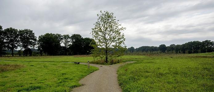 De natuurbegraafplaats op landgoed De Hoevens.