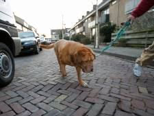 Woerdenaren willen meer parkeergelegenheid in nieuwe wijken