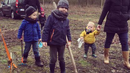 1.100 nieuwe boompjes geplant in Hamme