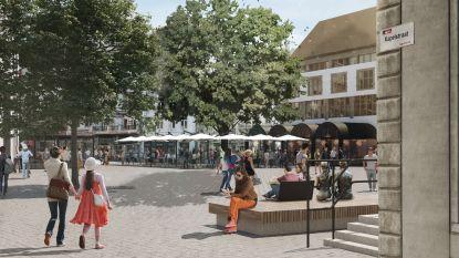 Heraanleg Grote Markt start met herinrichting kleine Maastrichterstraat