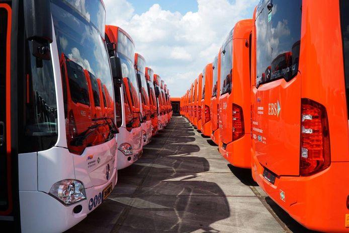 Bussen van streekvervoerder EBS voor de regio Haaglanden