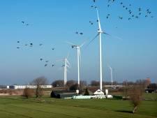 Energiecollectief: 'Tijd is rijp voor windmolens in Wijk bij Duurstede'