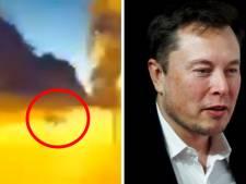 Un conducteur belge évite un sanglier grâce à sa Tesla, Elon Musk réagit