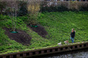 De gemeente heeft planten geplaatst op het talud langs het kanaal. Het kanaal moet een groene zone, het Zuid-Willemspark worden in de toekomst.