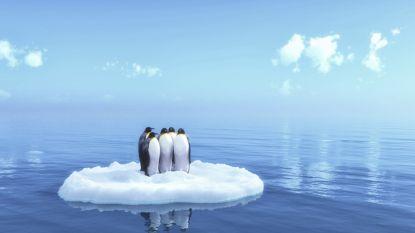 IJs op Zuidpool smelt steeds sneller, zeeniveau stijgt meer dan ooit