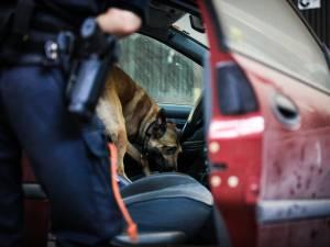 111 kg de drogue planqués dans sa voiture: une Belge détenue en France clame son innocence