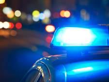 Twee bestuurders bekeurd in Waalwijk: één zonder rijbewijs, ander onder invloed