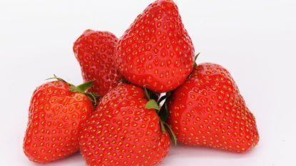 Eerste aardbeien zijn vroeg dit jaar