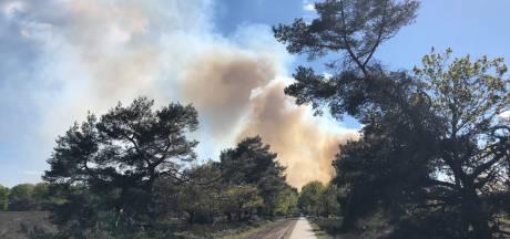 Satellietbeeld vegetatie helpt branden op Veluwe bestrijden