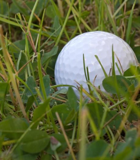 Netl bij Kraggenbrug sluit pitch and putt-baan: golf minder populair