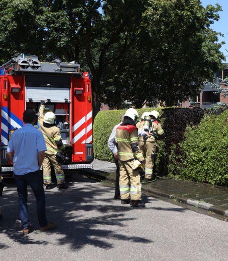 Heg vat vlam door onkruidbrander in Sint-Michielsgestel