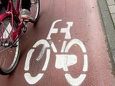Fietsers moeten stoppen voor verkeer Steenweg in Waardenburg