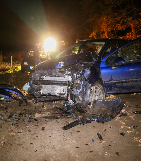 Avondje karten eindigt voor vriendengroep met knal tegen boom in Hellendoorn: twee gewonden