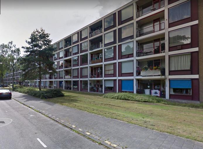 Flats aan de Prinses Margrietlaan in Zeist.