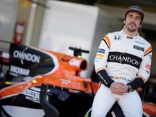 'Toro Rosso moet zich zorgen maken over de Honda-motor'