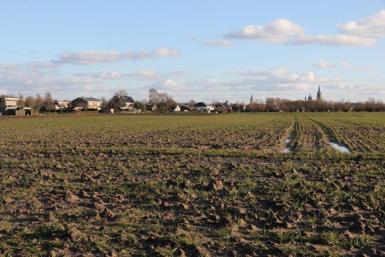 Het plan was om op deze velden op Reigersburg een industrieterrein te bouwen.