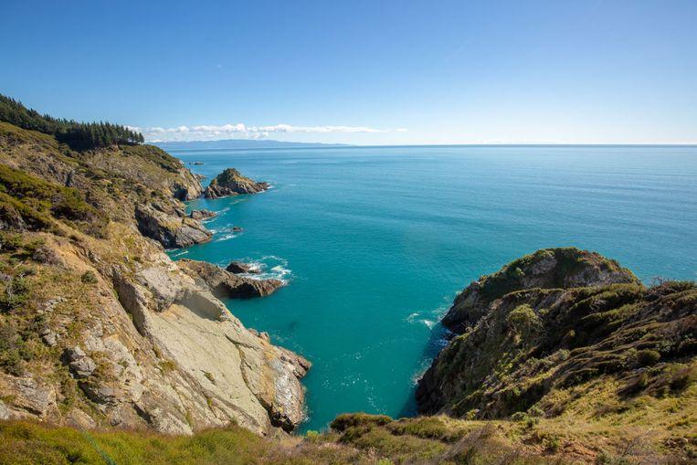 Uitzicht vanaf Pepin Island.