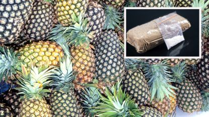 865 kilo cocaïne ontdekt in container met ananas voor bedrijf in Antwerpen