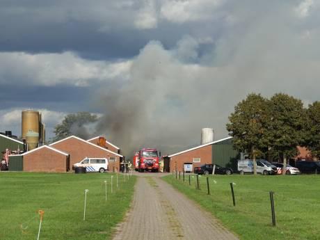 Pinken op tijd gered bij grote schuurbrand in Dedemsvaart