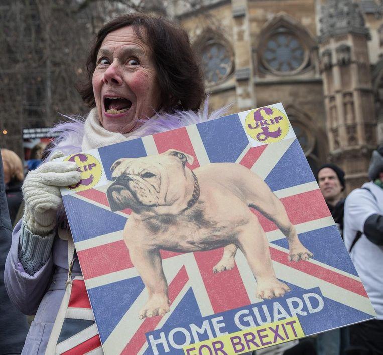 Een dag voor de uitspraak van het Britse hooggerechtshof verzamelden pro-Brexit-demonstranten zich op het Old Palace Yard in Londen. Beeld epa