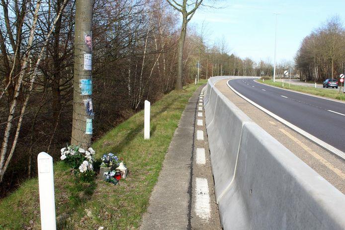 De 'meest dodelijk boom van Vlaanderen' staat nu eindelijk achter een betonnen stootrand.