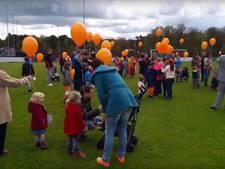 LIVE: Ecologische ballonnen in Den Dolder