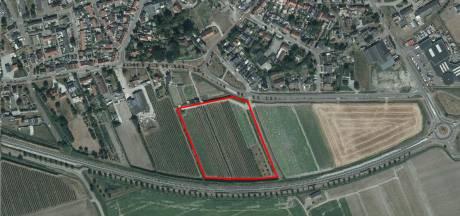 Schuur en huis bij boomgaard Poortvliet, mag dat? Gemeenteraad is nu aan zet