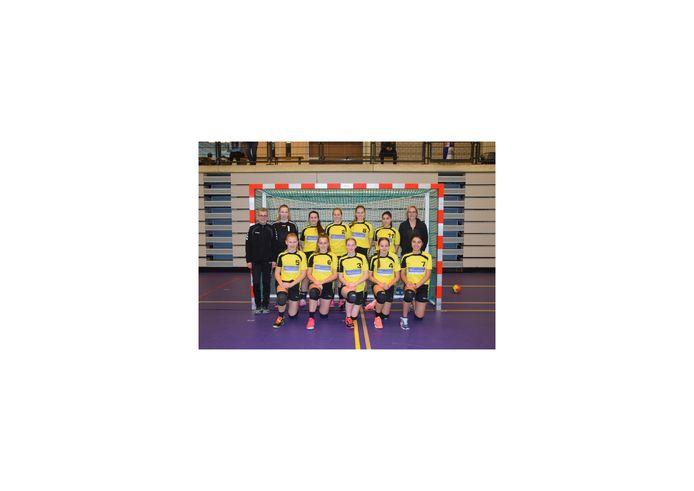 Ongekroonde Kampioenen: EHC'95 Da B