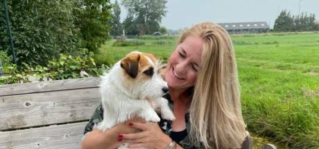 Hondje Puck gered na vergiftiging door te veel water drinken: 'Let goed op je hond'