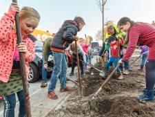 Meer parkeerplaatsen en bomen in Beatrixstraat Genemuiden