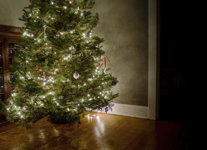 Wat doet u met de oude kerstboom?