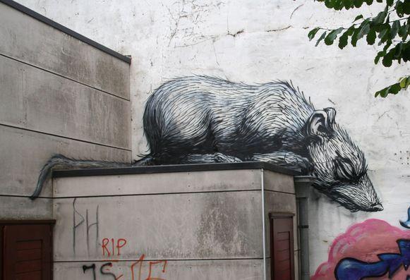 De rat van Roa in jeugdcentrum Den Eglantier.