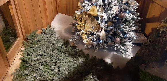 Iets wat Jordy Sabels van Groen Ieper niet meer zou zien: geen pakjes onder de kerstboom.