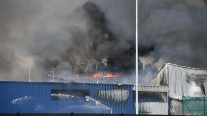 Brand bij afvalverwerkingsbedrijf Renewi in Kampenhout, rookpluim van ver te zien