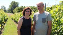 """Jo (50) en Karlien (50) maken wijn in het kleine Horebeke: """"Werken in de wijngaard, dat is voor ons een gezinsactiviteit"""""""