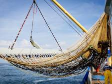 Noordzeevissers eisen nieuwe schepen die kunnen varen tussen windmolens op zee