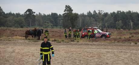 Steigerend paard valt op ruiter in Loonse en Drunense Duinen