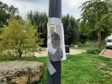 Ernstige mishandeling wordt kat KitKat in Deventer fataal: 'Zijn huid en staart zijn van zijn romp gerukt'