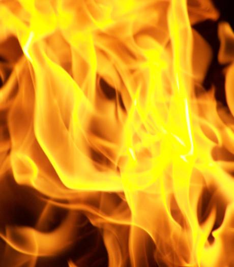 Brandweer rukt uit voor natuurbrand in Budel