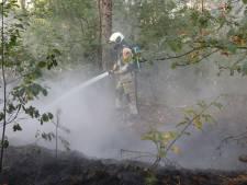 Brandweer vroeg uit de veren voor bosbrand in Soest